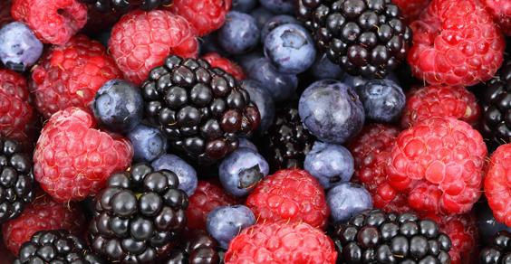 frutti-di-bosco-azienda-agricola-le-sinergie